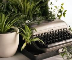Dimanche 17 janvier – Reprise de la réécriture de mon roman