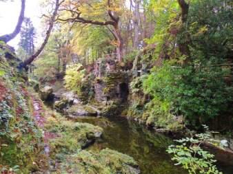 Bosque encantado en Juego de Tronos