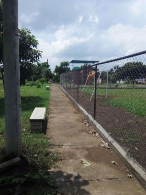 parque4