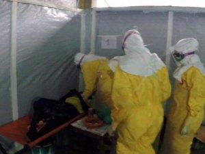 Ébola: Científicos luchan contra el virus