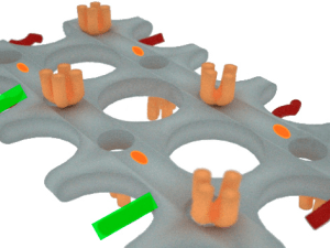 Fármacos con impresión 3D