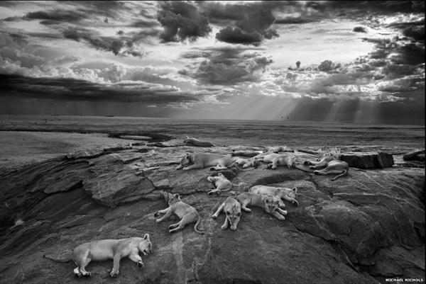 fotos impactantes naturaleza