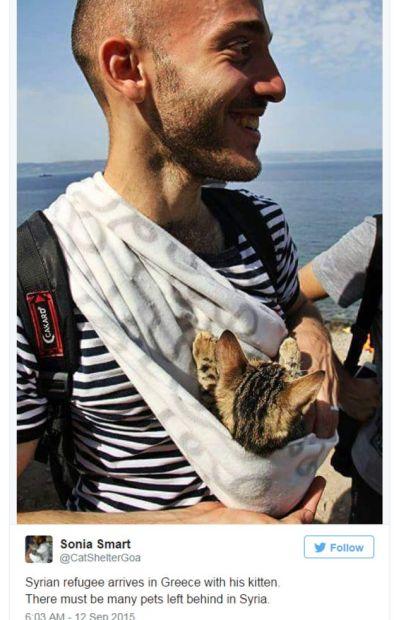Refugiados - un hombre y su gato