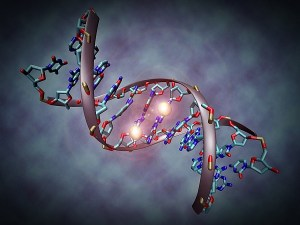 que-es-epigenetica