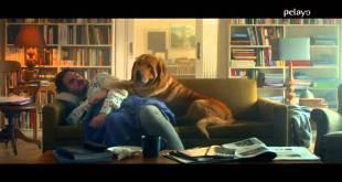 """""""Parte de tu vida"""", la nueva campaña de publicidad de Pelayo"""