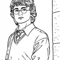 Desenhos Do Harry Potter Desenhos E Colorir
