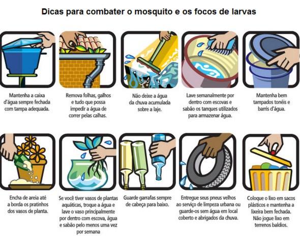 Desentupidora Curitiba controle da dengue