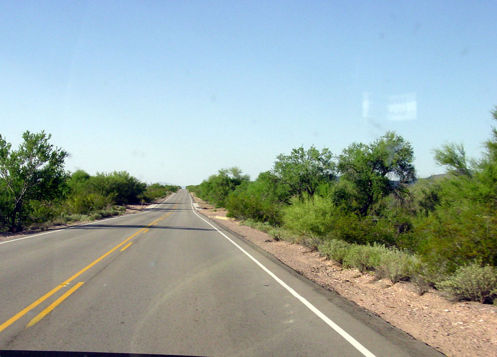 a Cleared road way, where buffel grass has been removed in Arizona.