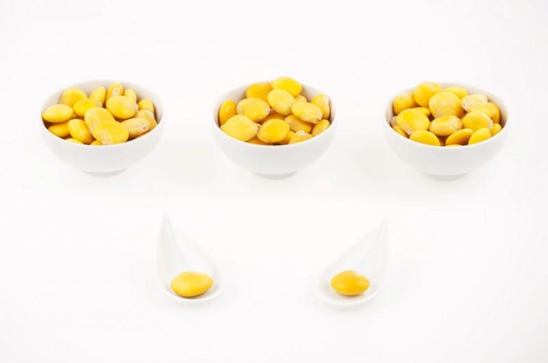 Des go ts et des couleurs les graines de lupin - Graine de lupin comestible ...