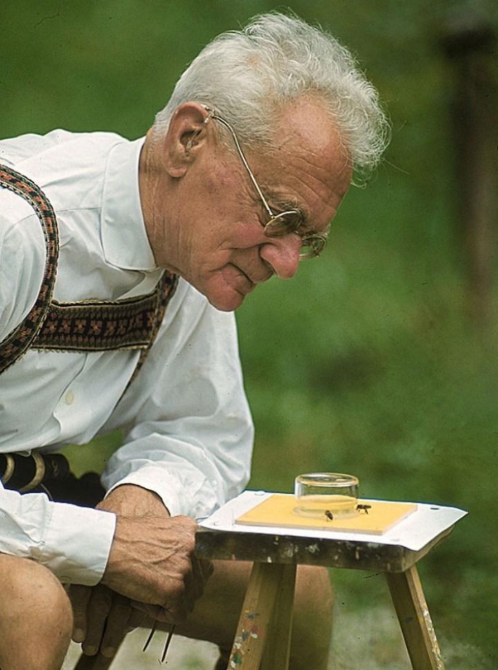 Karl Von Frisch