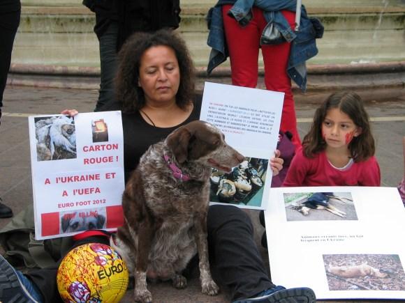 Massacre des animaux en Ukraine_09 juin 2012
