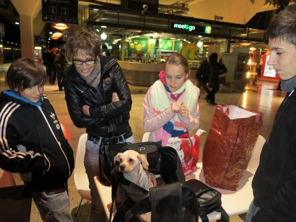 Dixie, Flavia et ses enfants