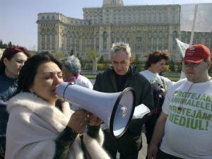 Avedis - militant roumain