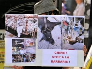 Action anti-Yulin 2017 à Paris - Le panneau de Danielle (01 juin 2017)