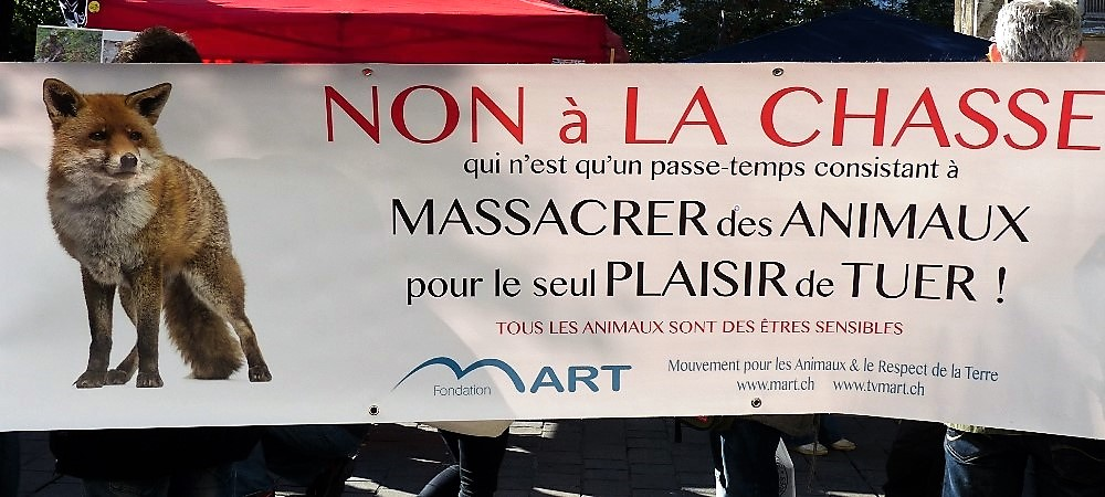 Chasse / Animaux sauvages - Actions militantes