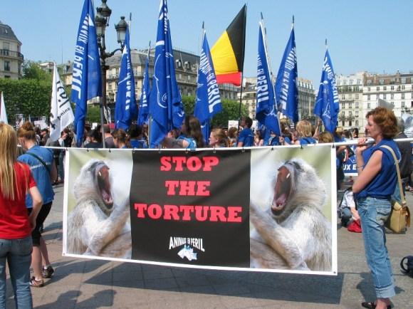 Marche européenne (Paris-23 avril 2011)