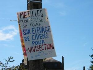 Vivisection Sur le chemin de l'élevage des Souches (Mézilles-10 septembre 2011)