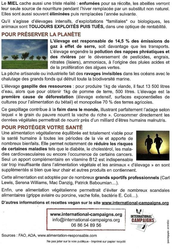 Tract Novembre Mois Vegan Mondial