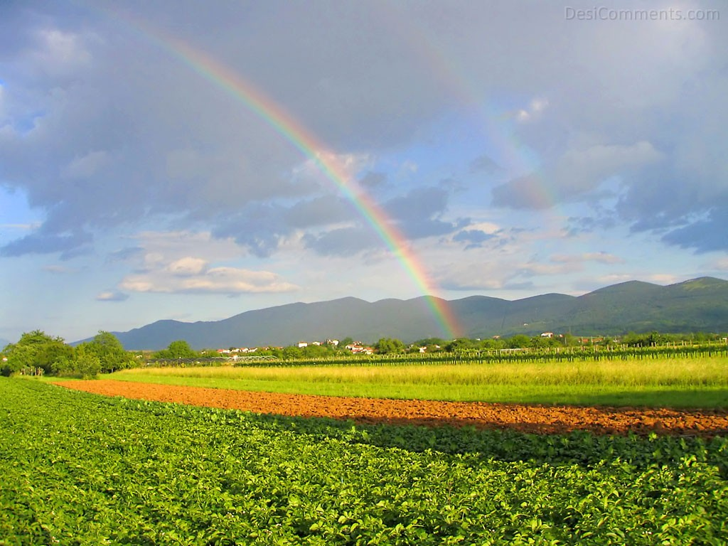 Rainbow Wallpapers Wallpapers Desicomments Com