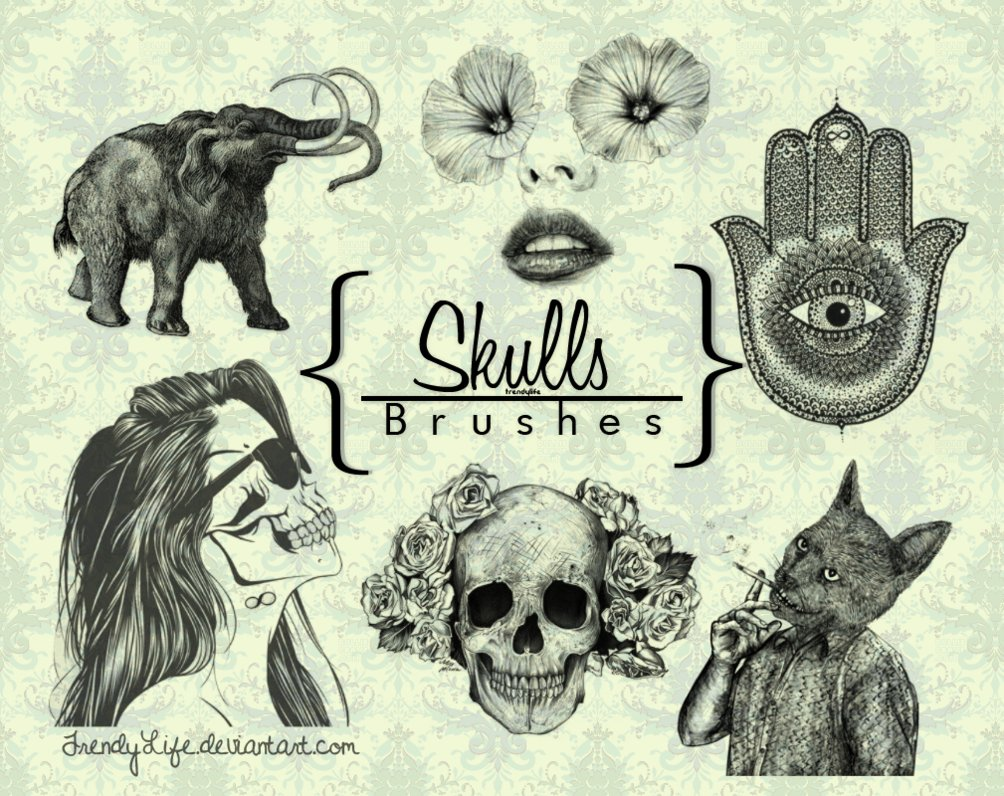 brushes_skull_by_trendylife-d61v838