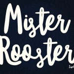 Awesome New Brush Script Font – Mister Rooster