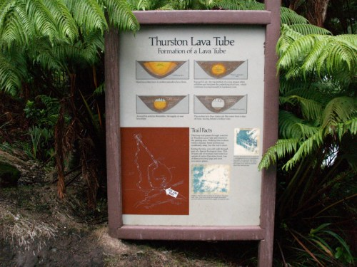 Thurston Lava Tube Formation, Hawaii Volcanoes National Park of a Lava Tube - The Underground World of Caves