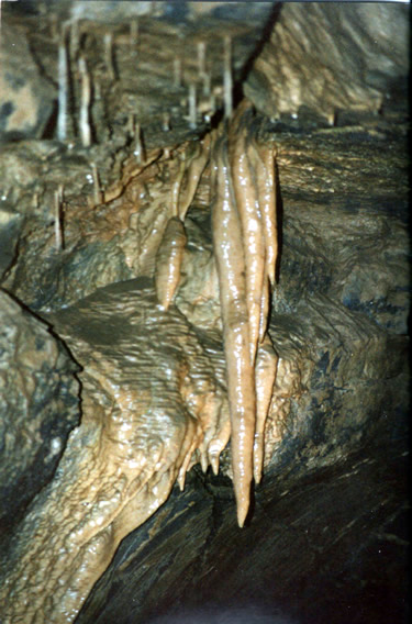 Formations in Aillwee Cave in the Burren - The Underground Burren, Ireland – The Underground World of Caves