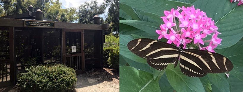 Karen Wertheimer Butterfly Enclosure, Coastal Discovery Museum at Honey Horn