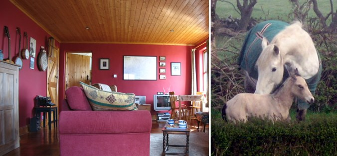 Craggy Island B&B – Ireland