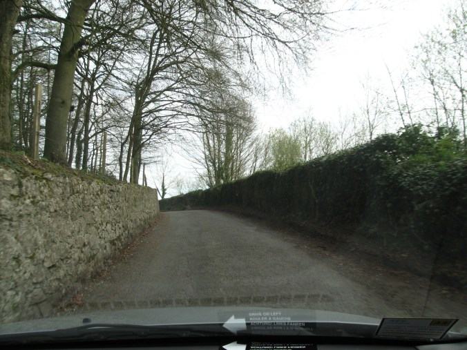 Many roads in Ireland are very narrow. There is nowhere to pull over. If you meet a car, someone has to reverse.