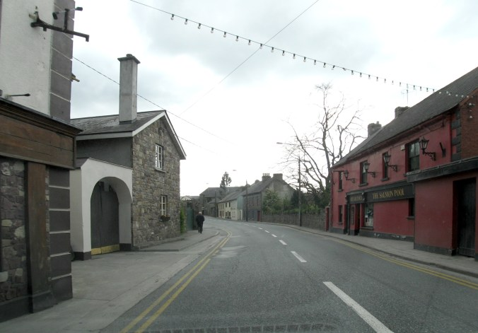 The Salmon Pool, Mill Street, Thomastown, Co Kilkenny, Ireland