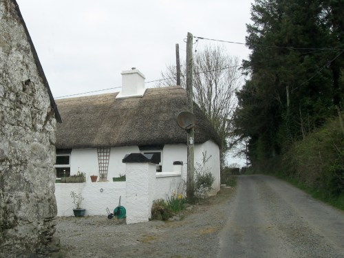 Thatched Roof on Unnamed Road that parallels R668 near Lismore on the Knockmealdown Mountains