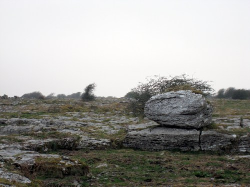 Glacial Erratic, a huge boulder deposited by ancient ice sheets on the Burren, Ireland