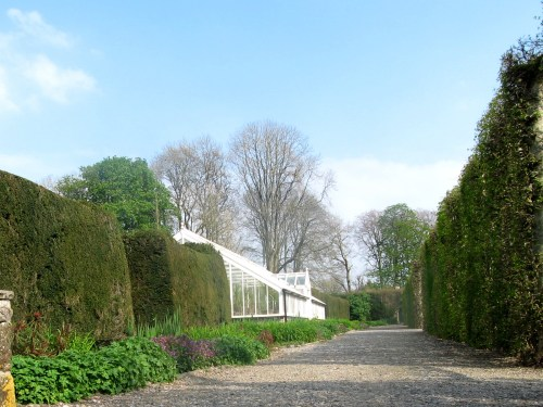 Glass house to propagate the seeds and plants at Birr Castle Gardens