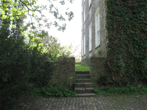 Steps leading up on the back of Leixlip Castle