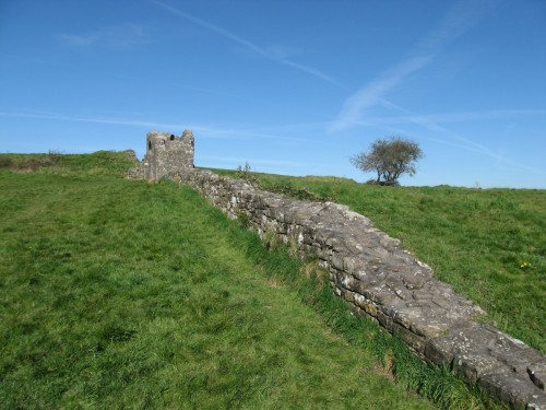 The Walls of Trim