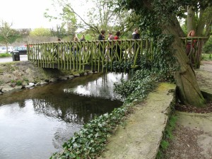 Bamboo Bridge near Swiss Cottage, Cahir, Ireland