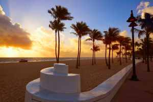 Fort Lauderdale, Florida, website SEO strategy