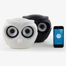 speakers-owl-civetta