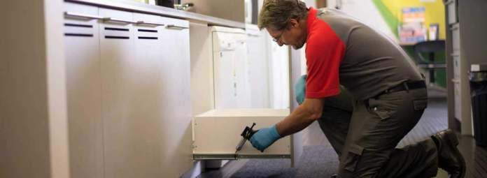 come eliminare gli scarafaggi da casa