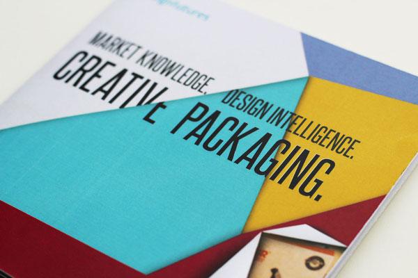 pictorial-brochure-design-3