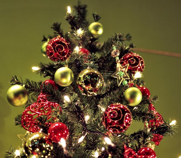 Christmas Tree Decorations Amp Ideas For 2013 30 Tree Images Designbolts