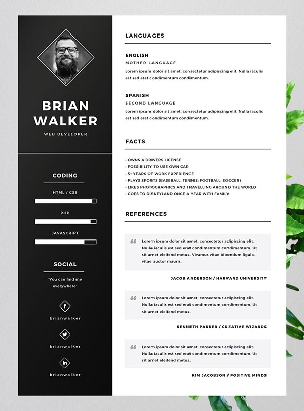 10 best cv in ai indesign psd formats