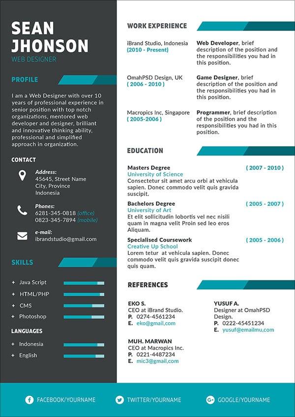 Resume Programmer Resume Template Free 5000 Free