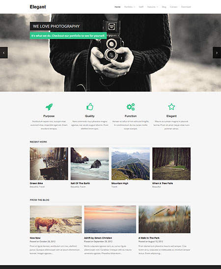 elegant-theme 21+ Best Free Responsive WordPress Themes for 2017