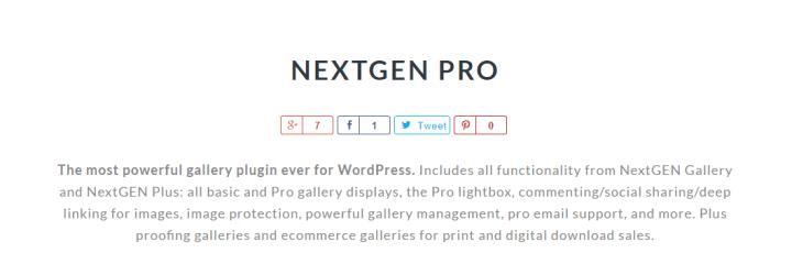 nextgen-pro 8 of the Best Gallery WordPress Plugins Compared
