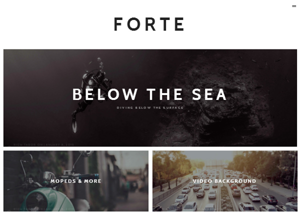forte 15 of the Very Best WordPress Themes for Writers
