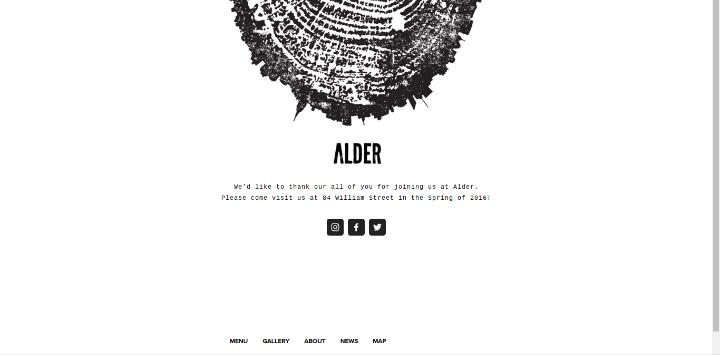 Alder 25 Examples of Unique Sites Using Squarespace