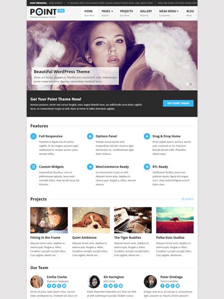 point 30 Newsworthy Magazine WordPress Themes for Blogs & Magazines