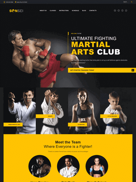 sensei 11 Powerful Sports & Fitness WordPress Themes for 2017